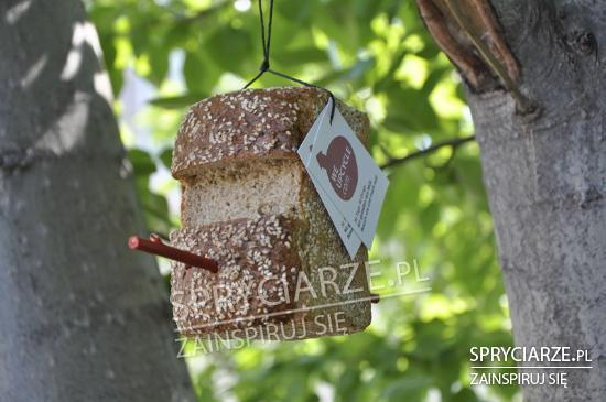 Chlebowy karmnik dla ptaków