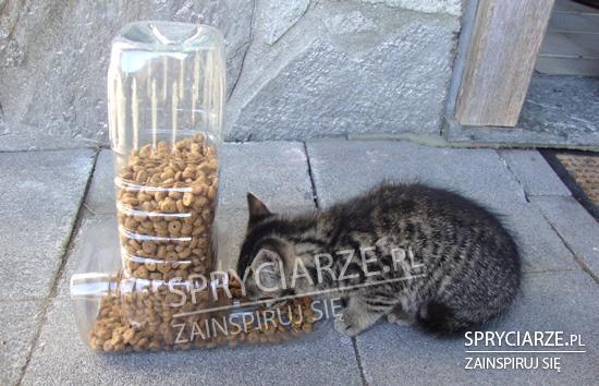 Dozownik na karmę dla kota