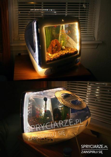 Akwarium z komputera iMac